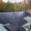 A Guide to the Different Types of SunPower Home Solar Products
